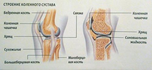 Почему горячие колени и болят. Боль в коленном суставе: причины, лечение, почему болят колени, что с этим делать, как и чем их лечить