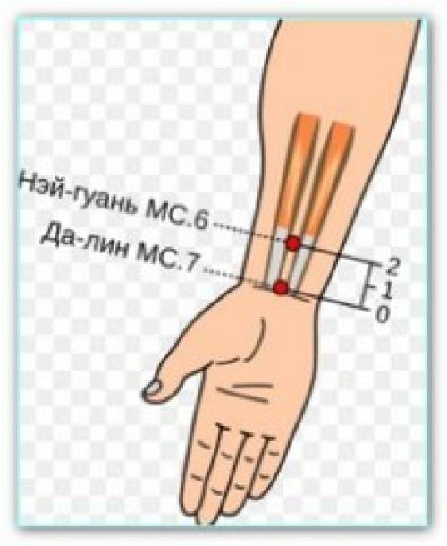 Биологически активные точки на руках. Биологически активные точки на руках