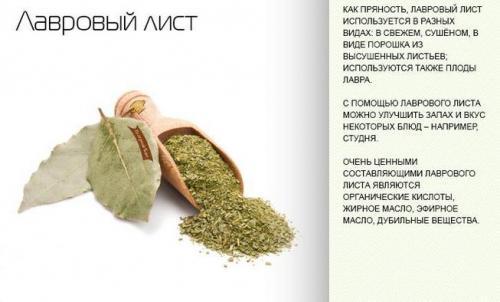 Мазь из лаврового листа для суставов. Рецепты для лечения суставов лавровым листом: отвары, настойки, мази, компрессы
