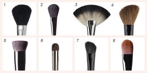 32 кисти для макияжа описание. Кисти для макияжа и их описание