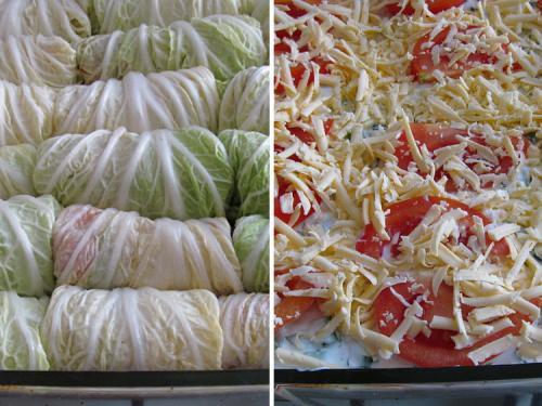 Голубцы из пекинской капусты в сметанном соусе. Голубцы из пекинской капусты запеченные под сметанным соусом
