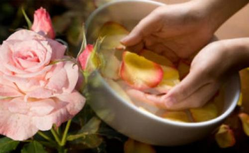 Лосьон из лепестков роз без спирта. Лучшие рецепты лосьонов из лепестков роз для разных типов кожи, доступные в домашних условиях