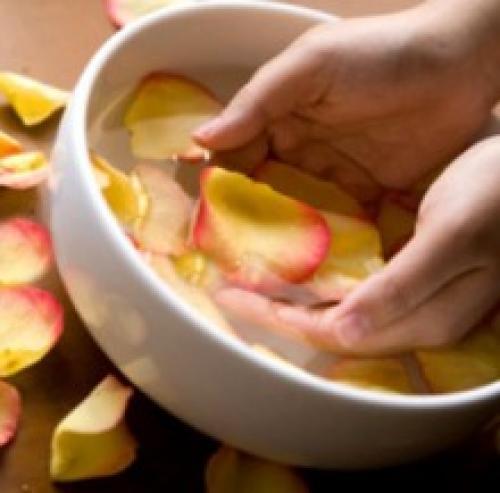 Как сделать лосьон из лепестков роз в домашних условиях. Как приготовить лосьон из лепестков роз?