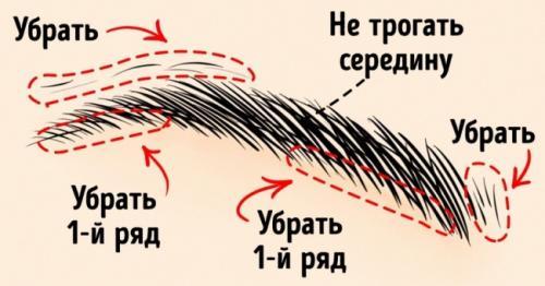 Как сделать брови густыми и широкими. 10хитростей, которые помогут создать идеальные брови