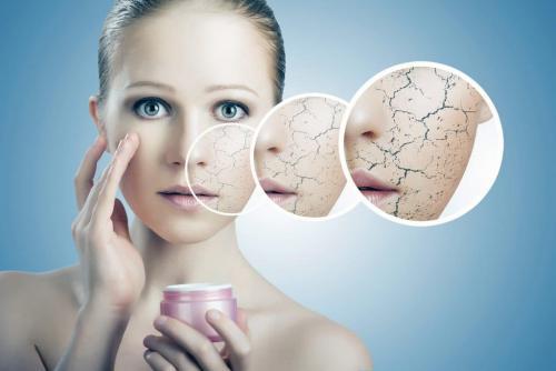 Ежедневный уход за сухой кожей лица. Уход за сухой кожей лица