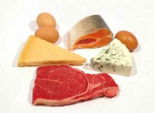Энергетическая функция белков. Белок в продуктах питания