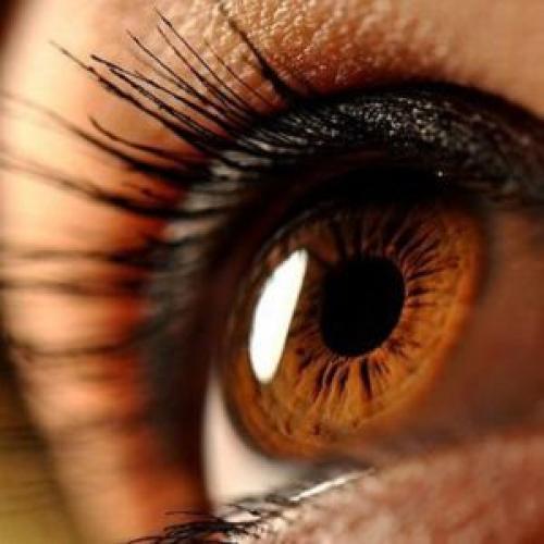 Как сделать макияж для карих глаз. Макияж для карих глаз различных оттенков