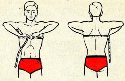Экскурсия грудной клетки » MAX-BODY