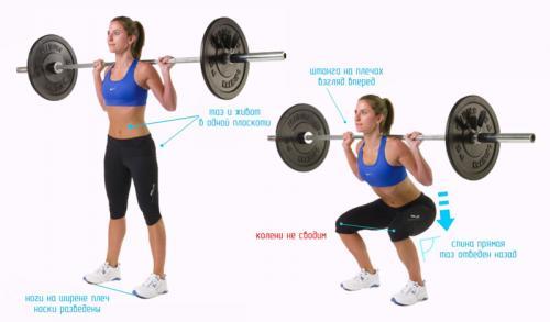 Комплекс упражнений для похудения в тренажерном зале для женщин. Особенности тренировок в тренажерном зале для женщин, желающих снизить вес