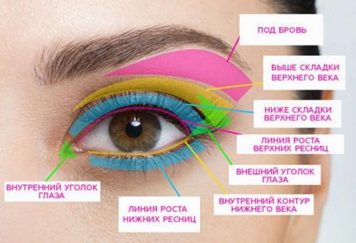 Хитрости макияжа глаз. Чтобы правильно наносить тени и пользоваться мастер-классами, необходимо знать названия частей века и глаза.