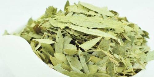 Сбор трав для похудения. Какие травы для похудения самые эффективные