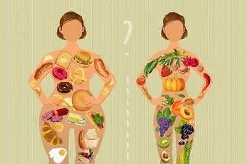 Витамины для ускорения обмена веществ. Препараты для ускорения и улучшения метаболизма