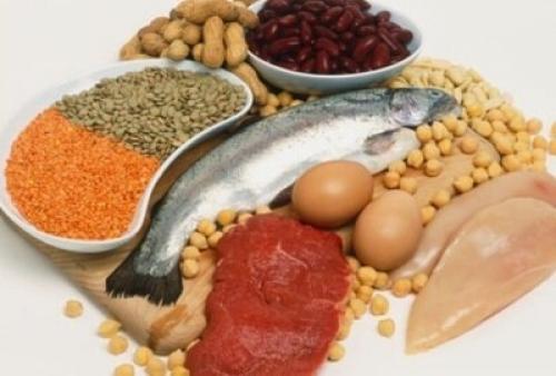 Список белковых продуктов. Самые белковые продукты: в каких продуктах очень много белка?