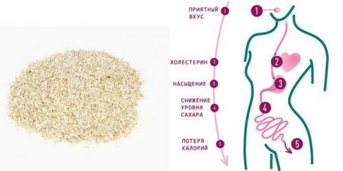 Овсяные отруби для похудения: полезные рецепты
