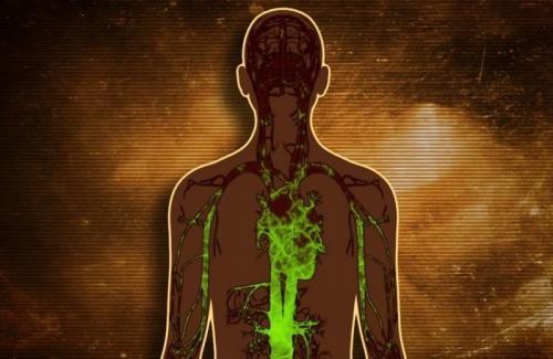 Вывести токсины и шлаки из организма препараты. Методы вывода токсинов и шлаков из организма