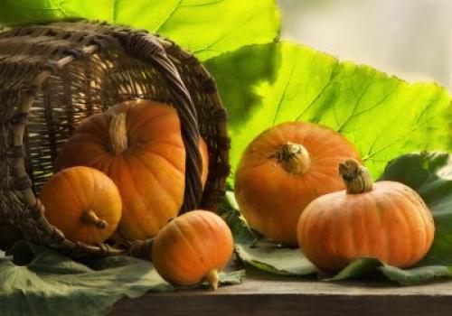 От тыквы толстеют или худеют. Польза тыквы для похудения и здоровья в целом