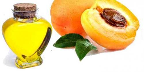 Масло для тела абрикосовое. Свойства и польза масла абрикоса