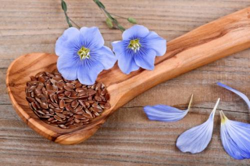 Семена льна можно ли жевать. Можно ли есть сырыми семена льна