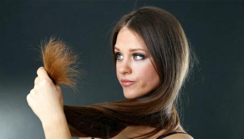 Лечение секущихся волос народными средствами. Как лечить секущиеся волосы в домашних условиях