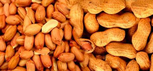 Арахис чем полезен. Польза арахиса для организма, калорийность
