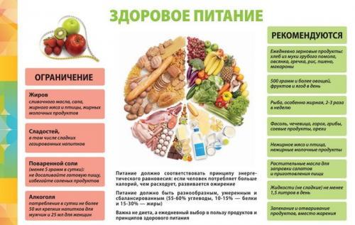 Обед для похудения рецепты. Принципы правильного питания для худеющих