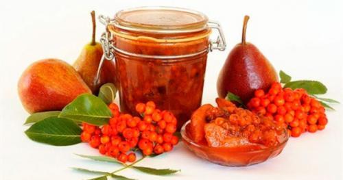 Протертая красная рябина с медом. Сочетание мёда и рябины