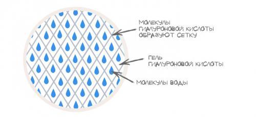 Гиалуроновая кислота для лица. Польза гиалуроновой кислоты