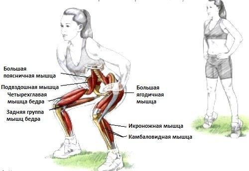 Неумывакин упражнения для суставов. Приседания по Неумывакину: в чем польза?