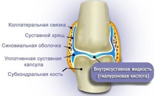 Уколы в колено гиалуроновая кислота. Фармакодинамика и фармакокинетика