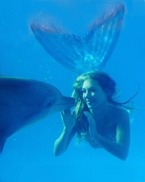 Как стать русалкой. 33-Летняя Ханна фрейзер работает русалкой в аквариуме города Сиднея.