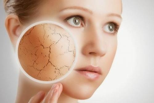 Маски для сухой кожи лица в домашних условиях. Маски для сухой кожи лица - домашние рецепты.