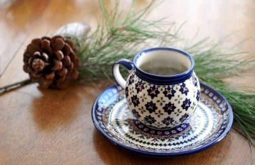 Чай из хвои можжевельника. Хвойные чаи.  1. витаминный напиток из хвои.