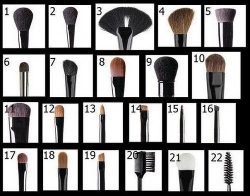 Все виды кисти для макияжа. Все виды кистей для макияжа.