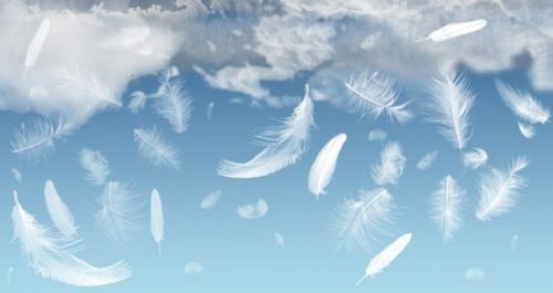 Знаки от ангела-хранителя. 7 знаков, которые посылает вам ангел - хранитель.