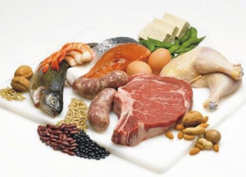 Каковы главнейшие функции белков. Самое важное о белках.