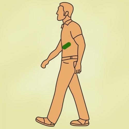 Интересные факты О ходьбе. 10 фактов о ходьбе, после прочтения которых хочется вытащить себя на прогулку.