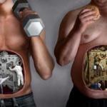 Узнайте о связи между питанием человека и типом его поведения.