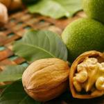 Грецкий орех.  Аюрведа относит грецкий орех к масляной тяжелой пище, понижающей вата - Дошу и повышающей питту и капху.