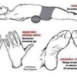 Как убрать живот и выпрямить спину.