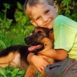 6 предрассудков о воспитании мальчика.