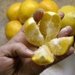 Вот что произойдет, если вы поместите кусочек лимона рядом со своей кроватью!