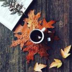 Утро должно начинаться с кофе, а не с испорченного настроения.