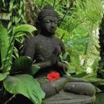8 уроков будды, для счастливой и гармоничной жизни.