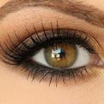 Урок: красивый макияж коричневыми тенями пошагово.