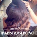 Травы для красивых волос. Лучшие народные советы.
